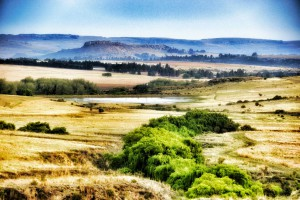 A typical Eastern Free State landscape.
